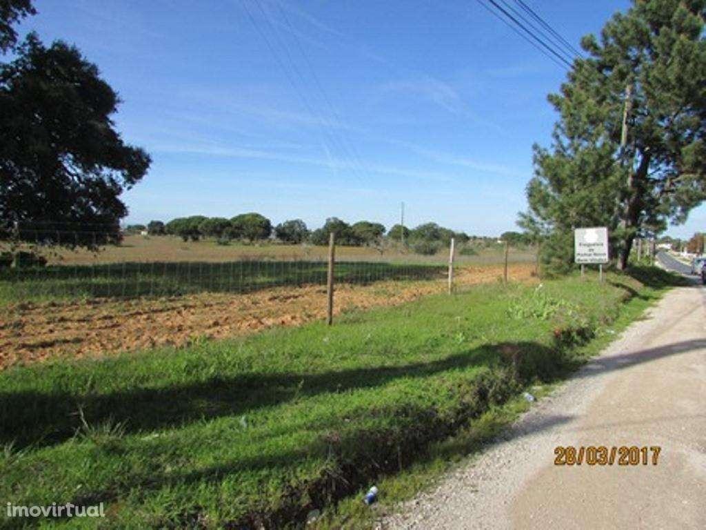 Terreno para comprar, Pinhal Novo, Setúbal - Foto 17