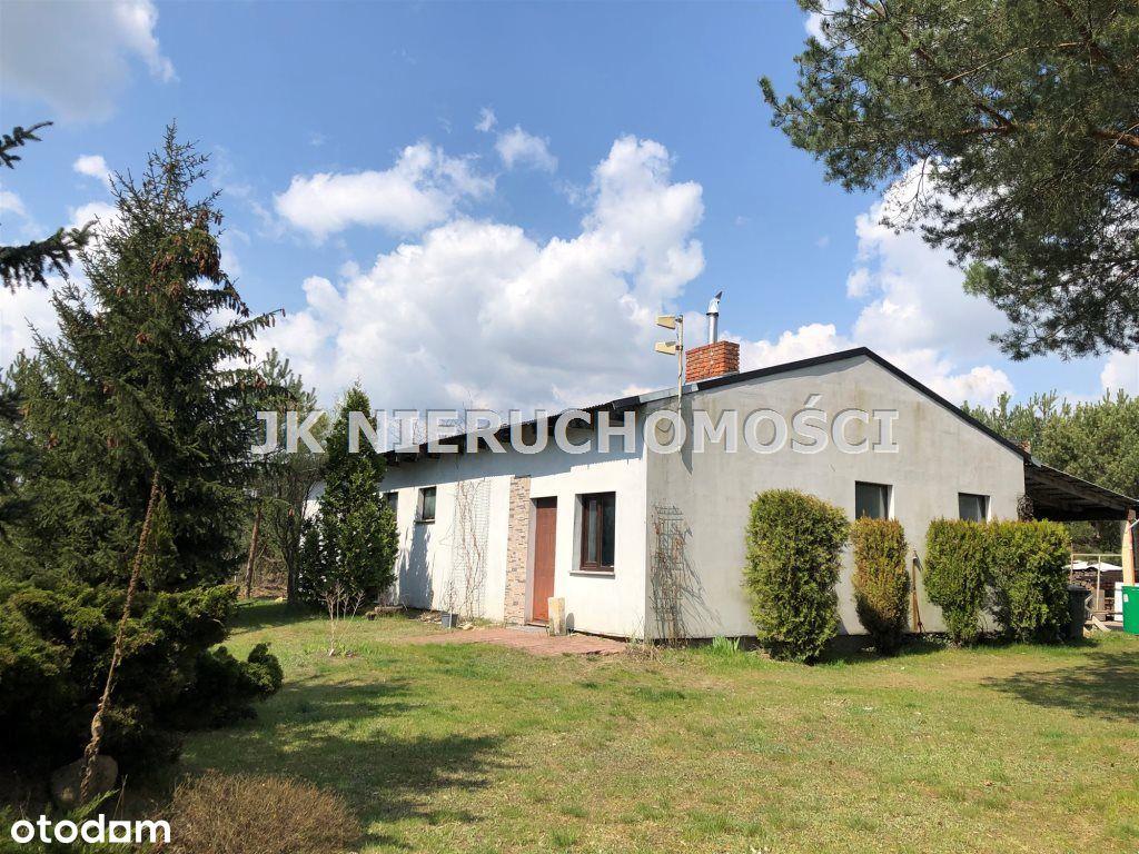 Lokal użytkowy, 400 m², Piotrków Trybunalski