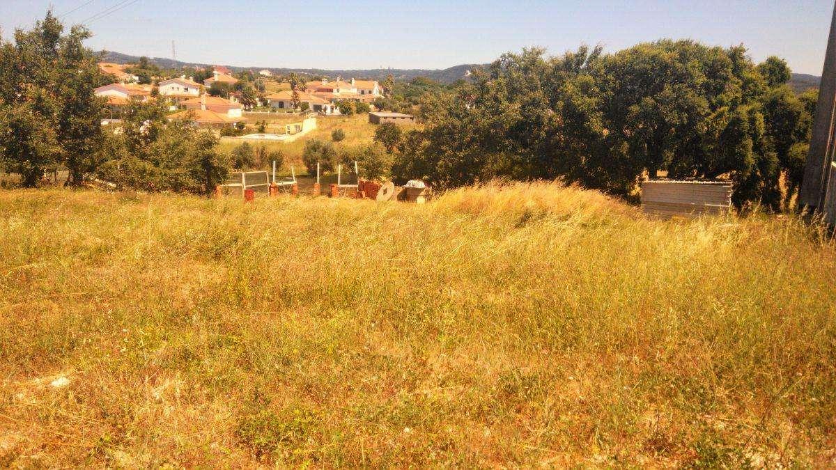 Terreno para comprar, Casais e Alviobeira, Santarém - Foto 1
