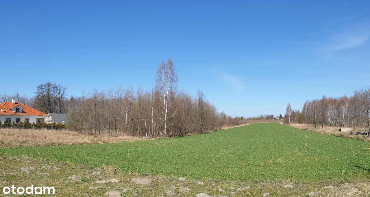 Działka Park Krajobrazowy Wzniesień Łódzkich