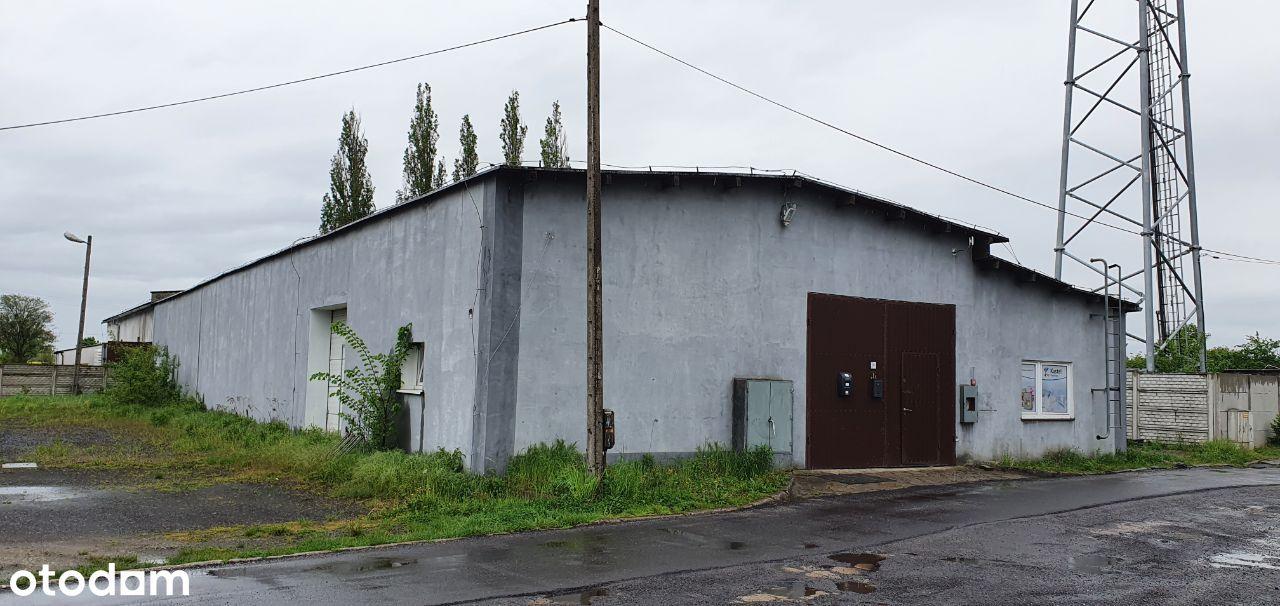 Hala produkcyjno-magazynowa 620 m2 Łambinowice