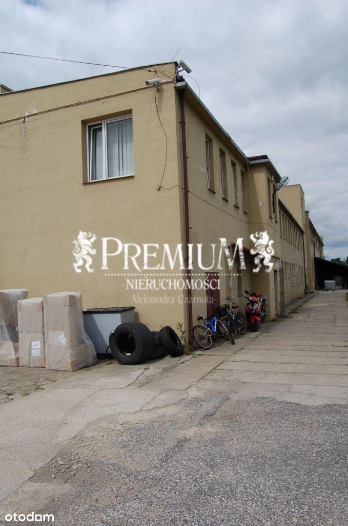 Lokal użytkowy, 3 300 m², Dobroszyce