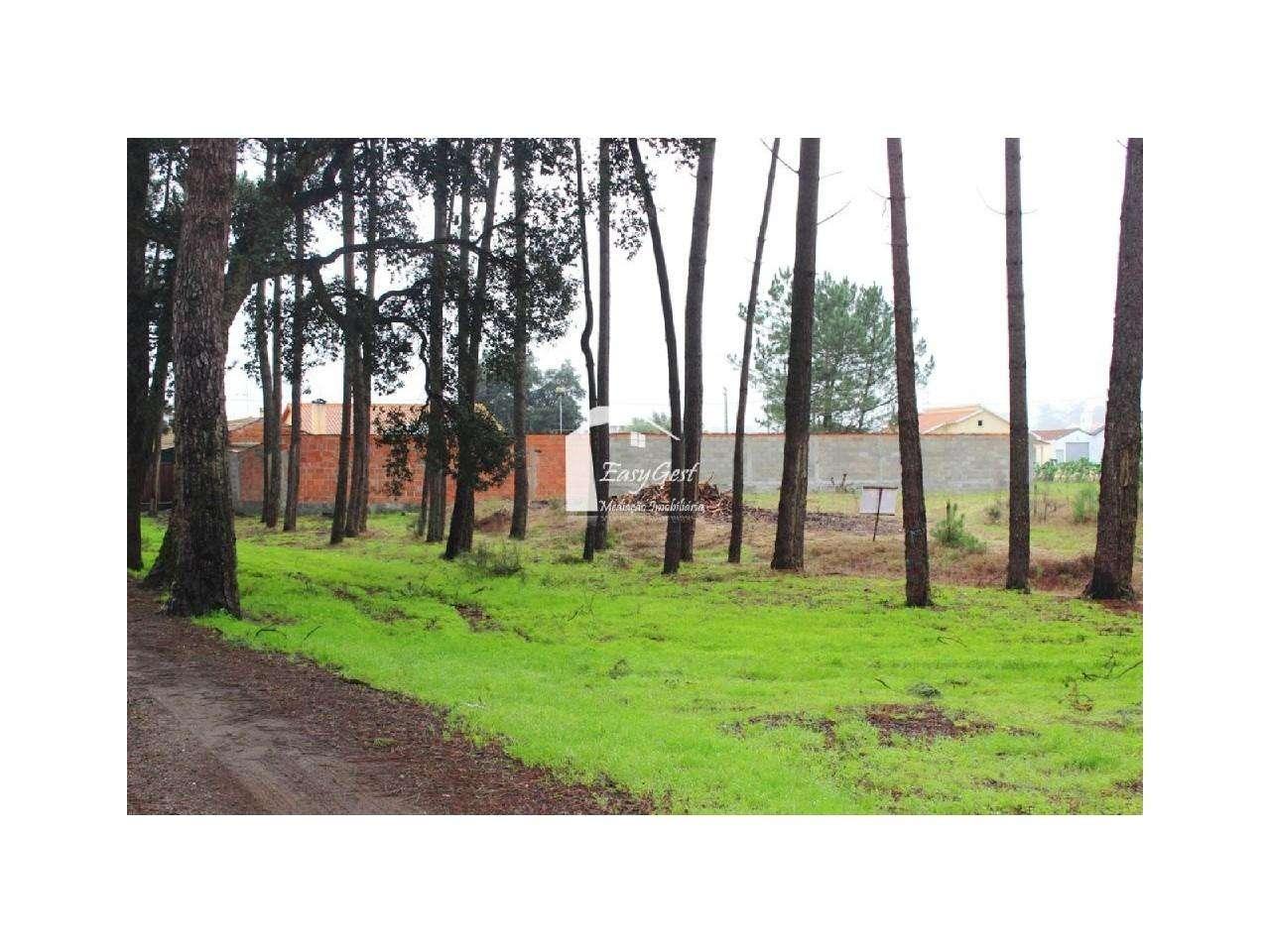 Terreno para comprar, Monte Redondo e Carreira, Leiria - Foto 14