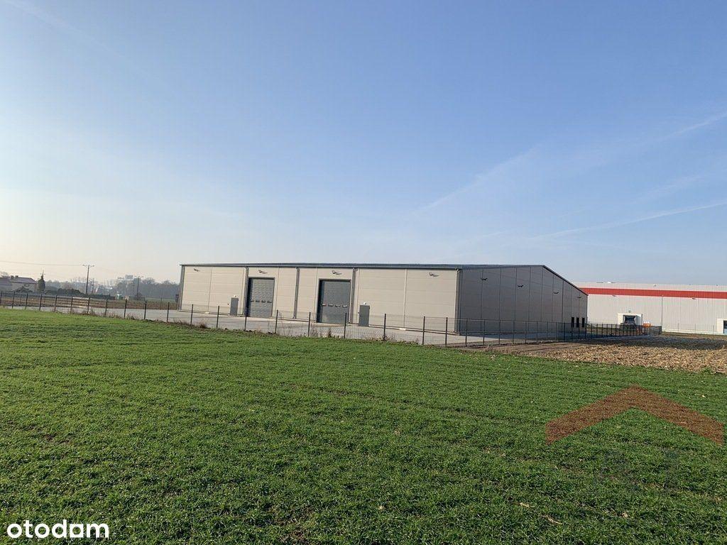 Nowy budynek magazynowo-biurowy w Robakowie