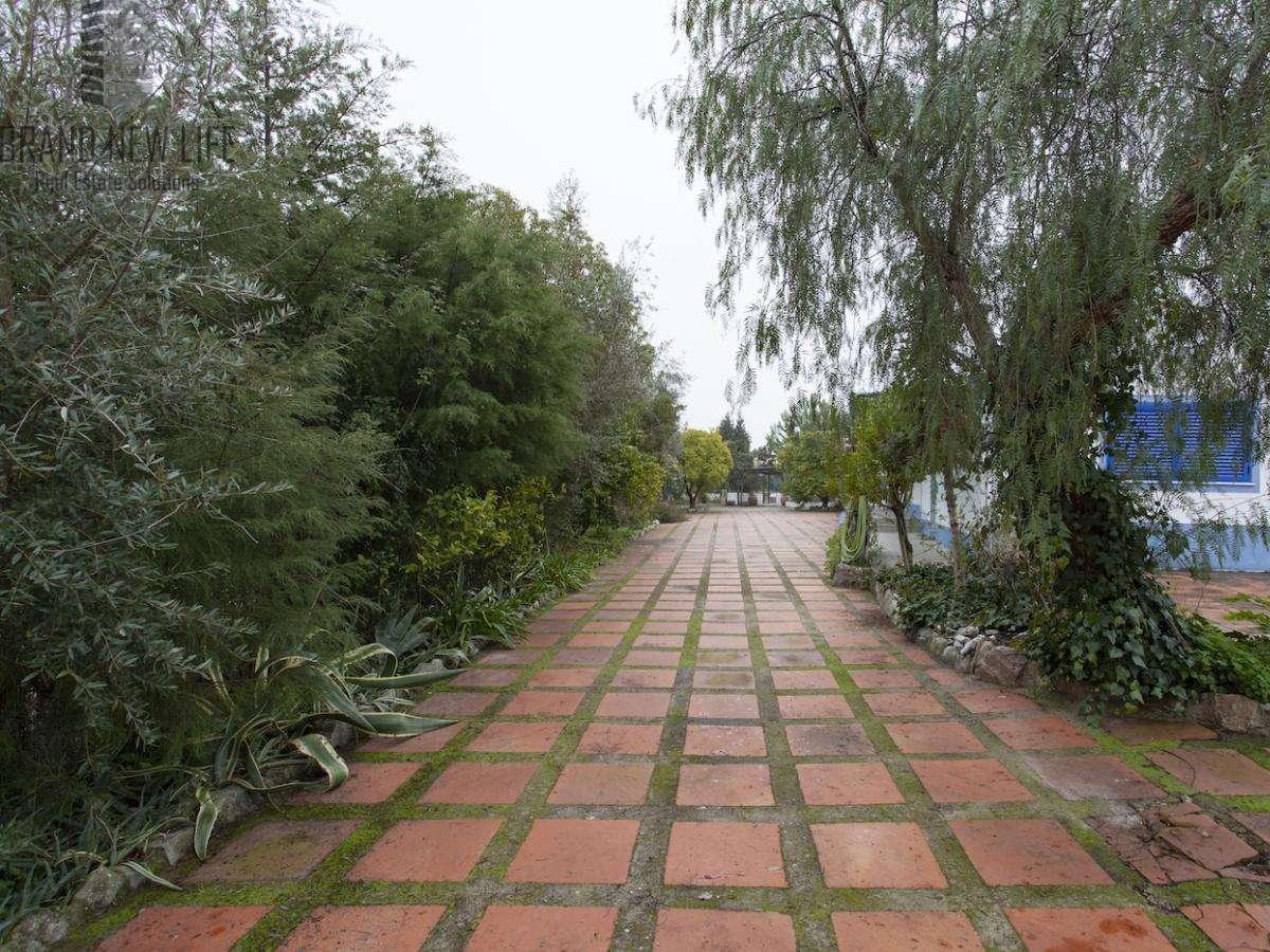 Quintas e herdades para comprar, Benavila e Valongo, Portalegre - Foto 27