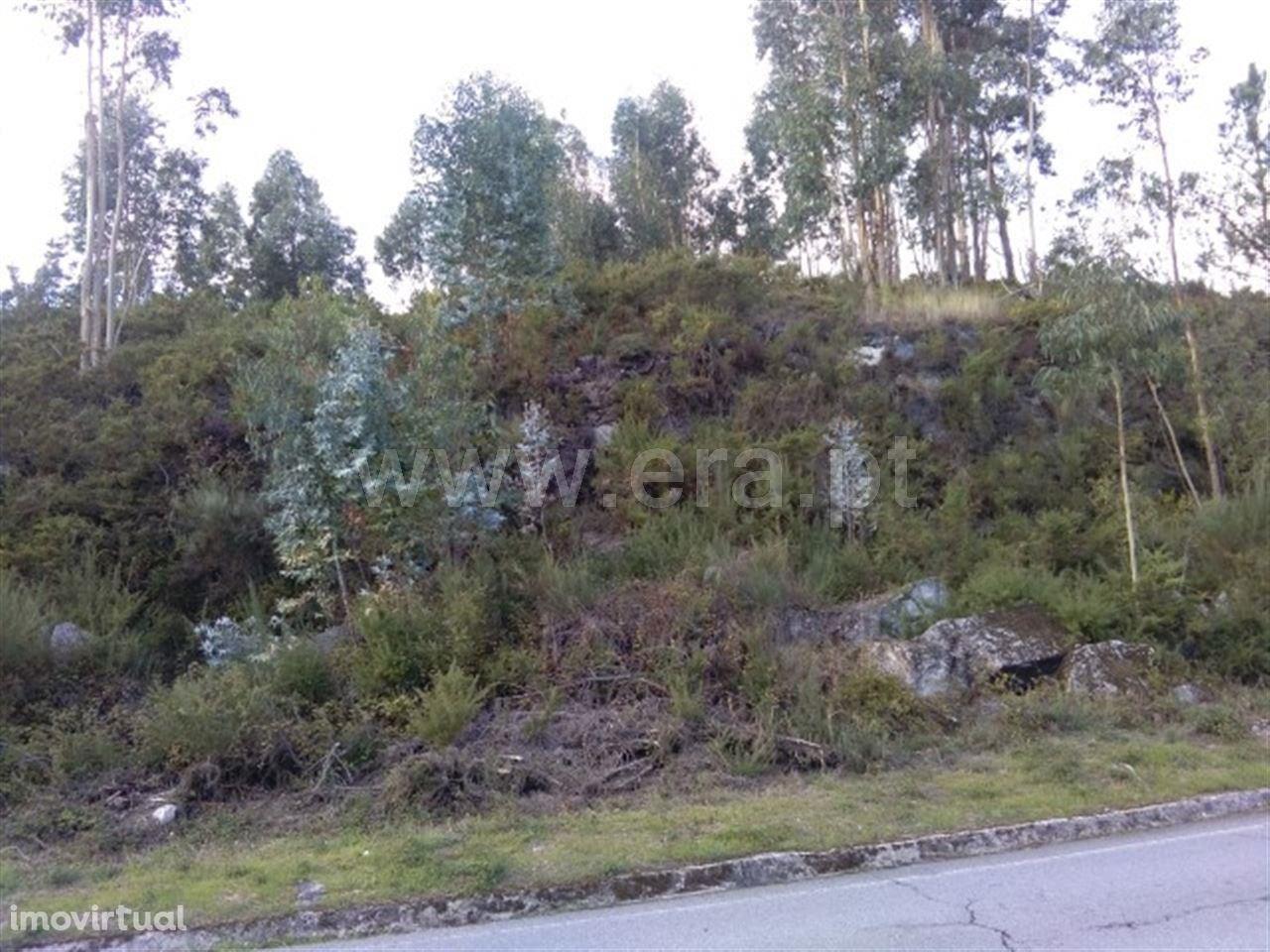 Terreno rústico com 5.000 m2 em Estorãos