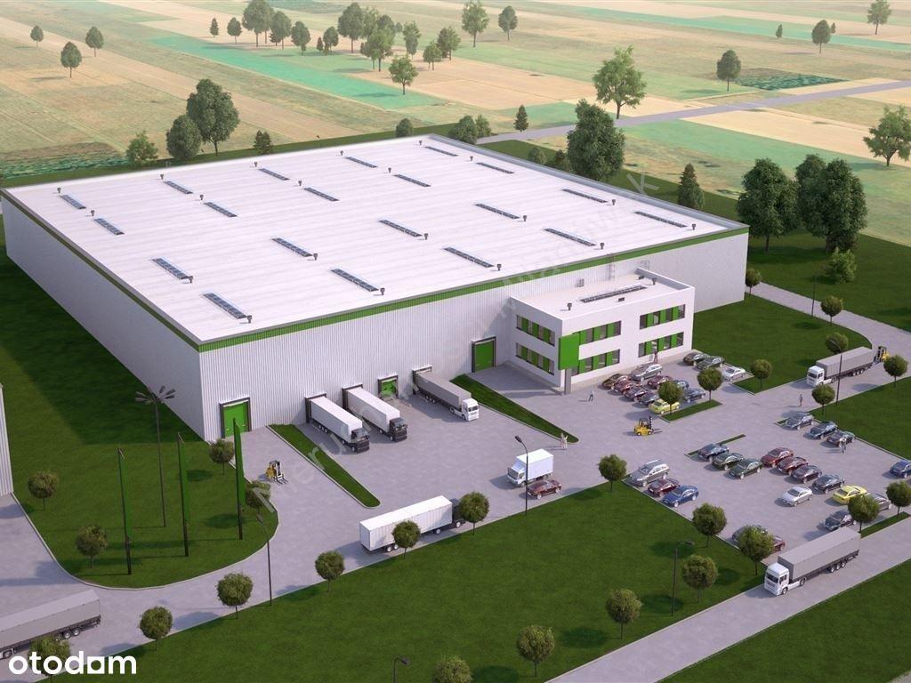 Działka, 10 000 m², Pruszków