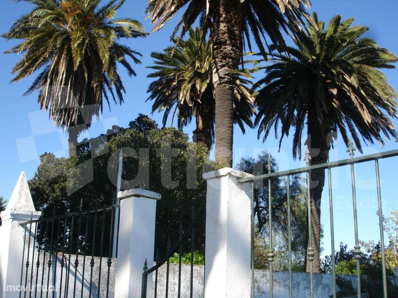 Quintas e herdades para comprar, Beja (Salvador e Santa Maria da Feira), Beja - Foto 36