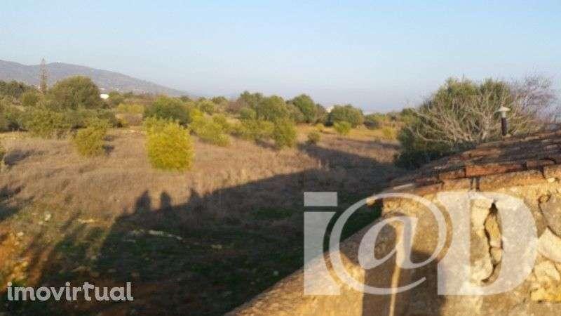 Quintas e herdades para comprar, Santa Bárbara de Nexe, Faro - Foto 9