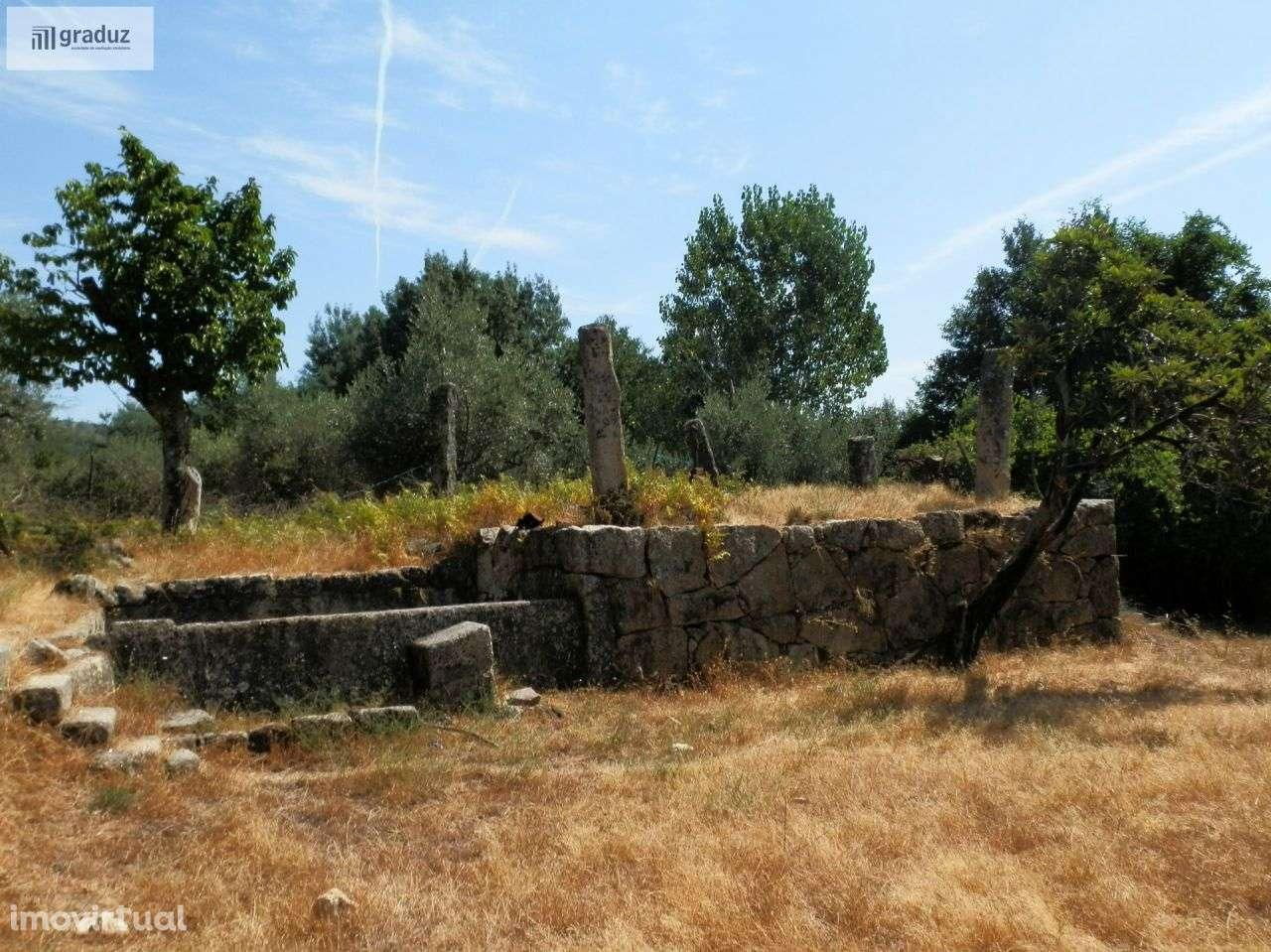 Quintas e herdades para comprar, Louriçal do Campo, Castelo Branco - Foto 29