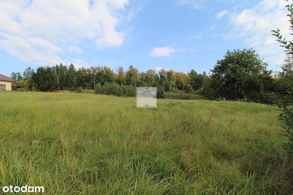 Widokowe działki na wzgórzu, Lipowica - Przemyśl