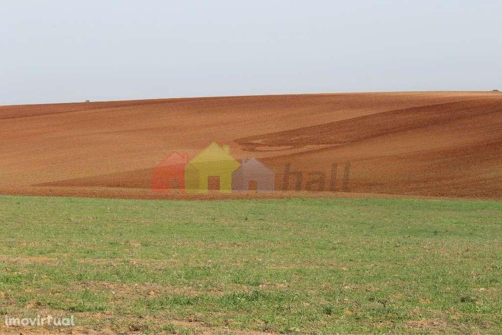 Quintas e herdades para comprar, Albernoa e Trindade, Beja - Foto 1