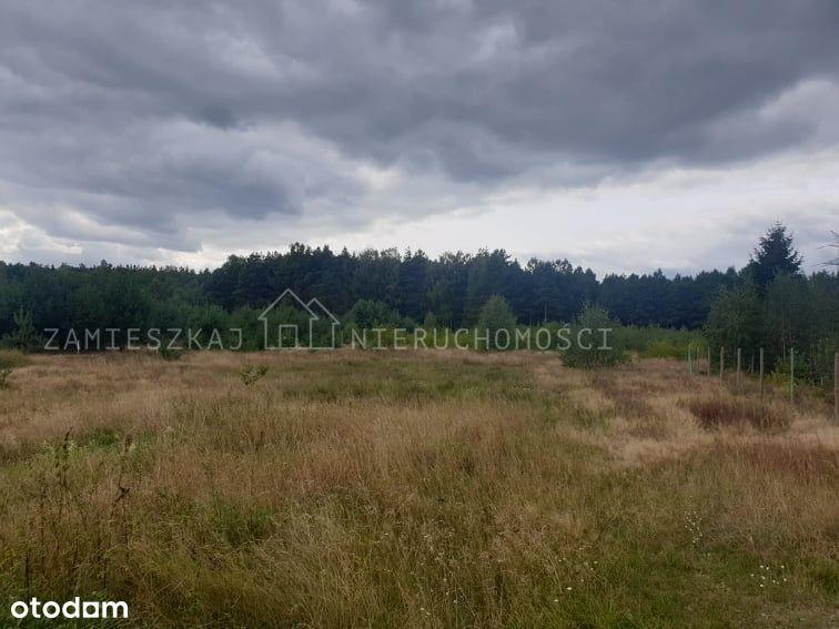 Działka rolna pod budowę w Fordonie