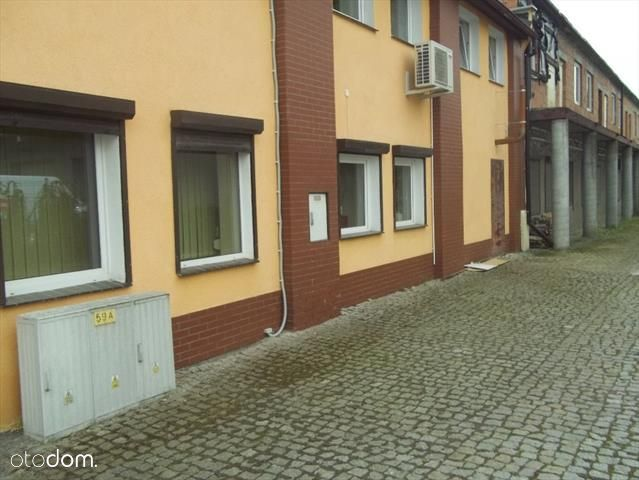 Lokal użytkowy, 670 m², Wrocław