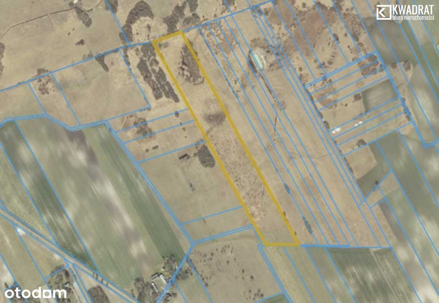 Wielkopole/ 4,56 ha/ działka rolna