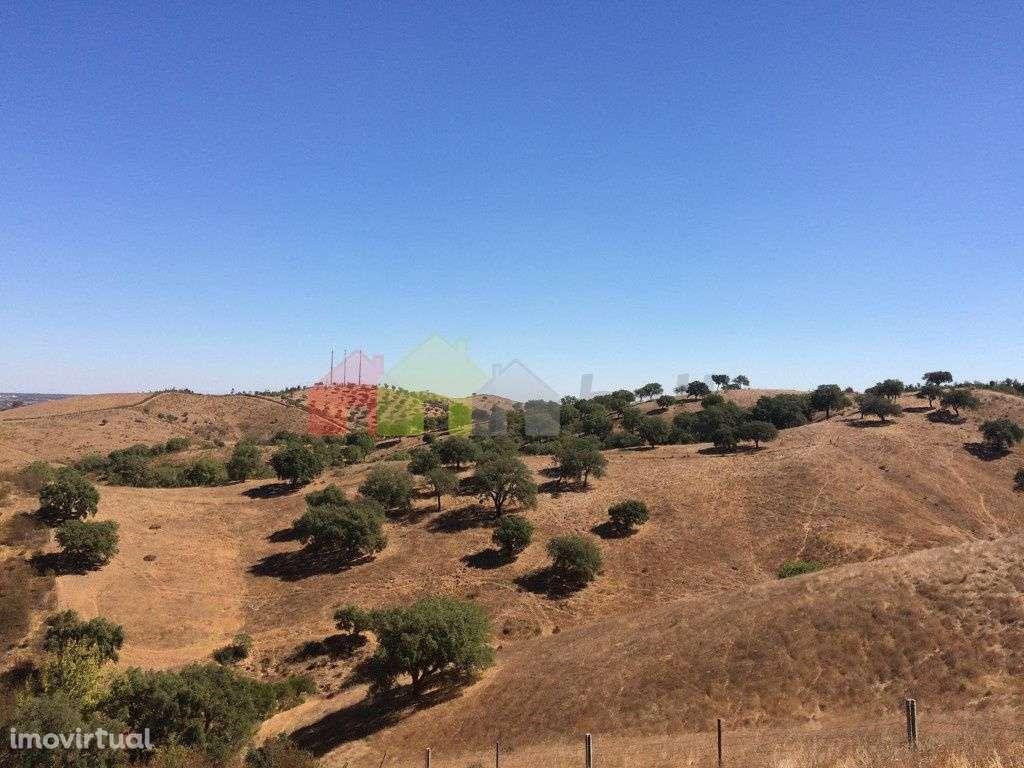 Quintas e herdades para comprar, Santana da Serra, Beja - Foto 17