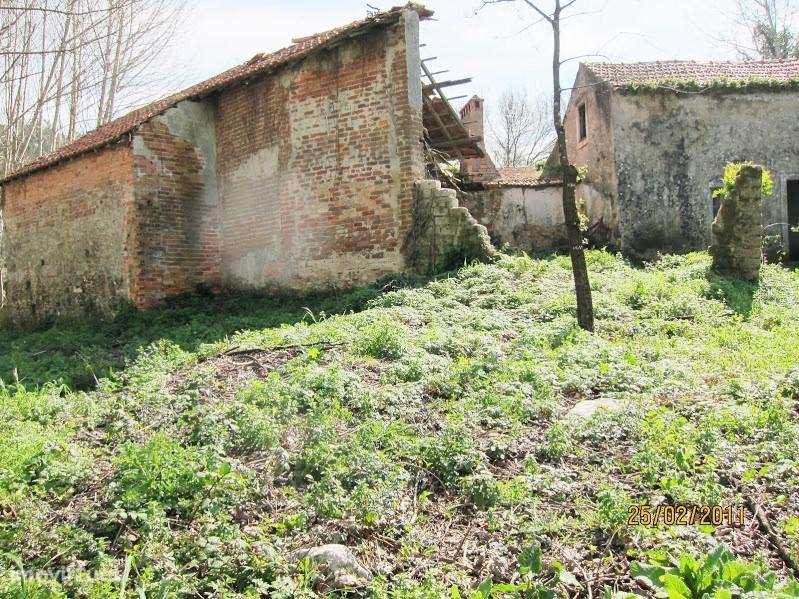 Terreno para comprar, Coz, Alpedriz e Montes, Leiria - Foto 8