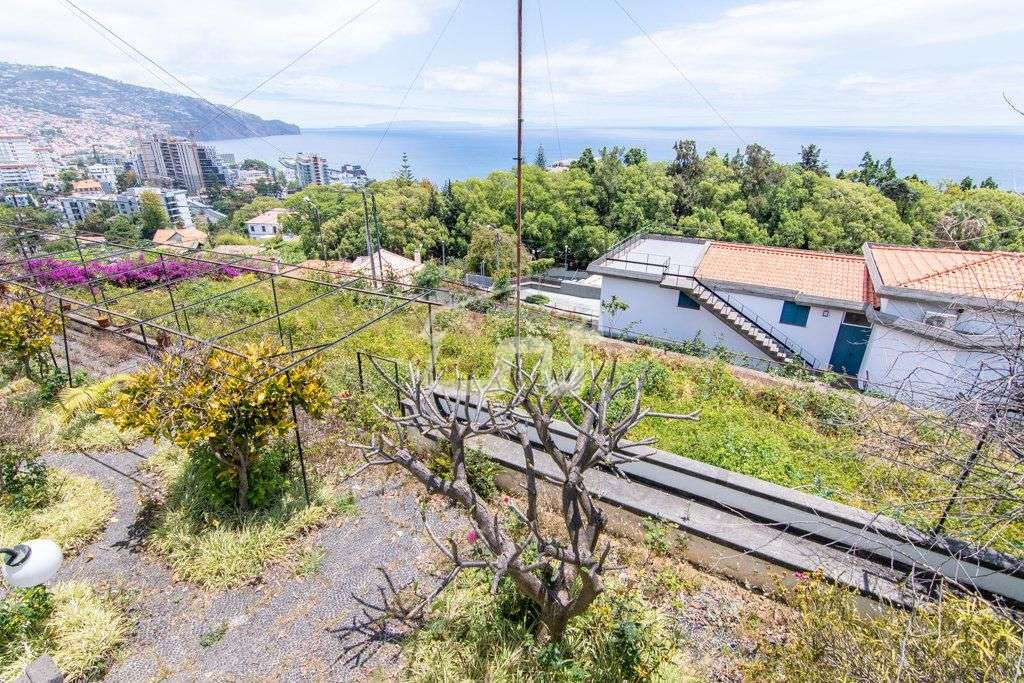 Quintas e herdades para comprar, São Martinho, Ilha da Madeira - Foto 16