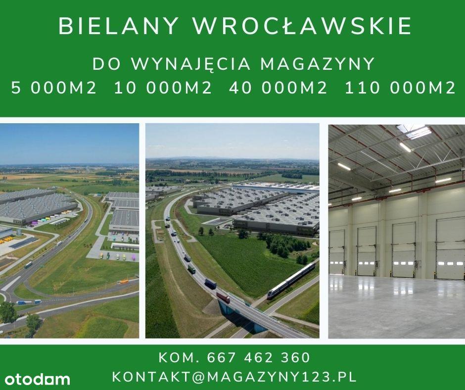 Bielany Wrocławskie magazyn do wynajęcia 12m wys.