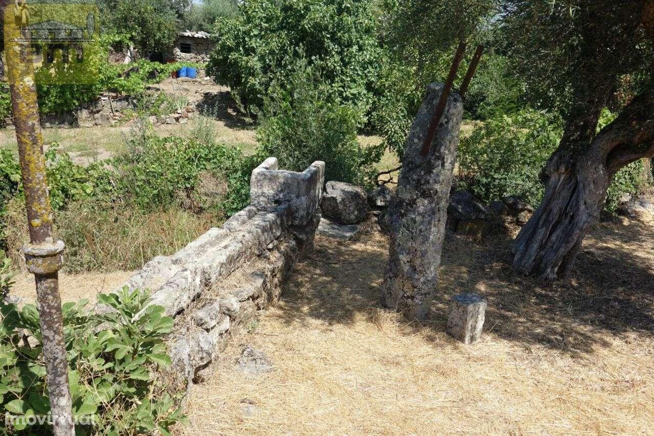 Quintas e herdades para comprar, Escalos de Cima e Lousa, Castelo Branco - Foto 14