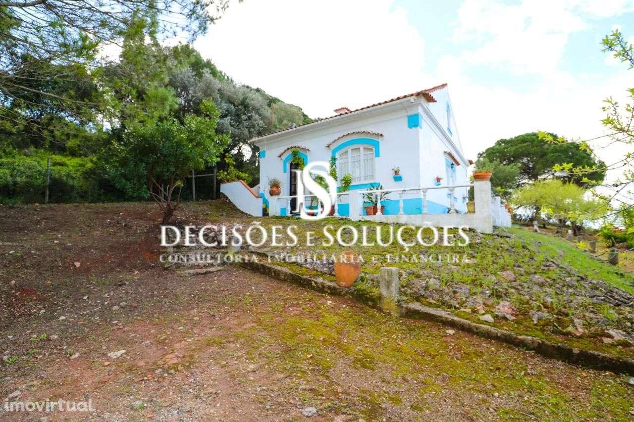 Quintas e herdades para comprar, Santiago do Cacém, Santa Cruz e São Bartolomeu da Serra, Santiago do Cacém, Setúbal - Foto 1