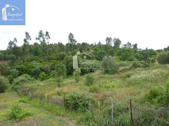 Quintas e herdades para comprar, Martinchel, Abrantes, Santarém - Foto 33
