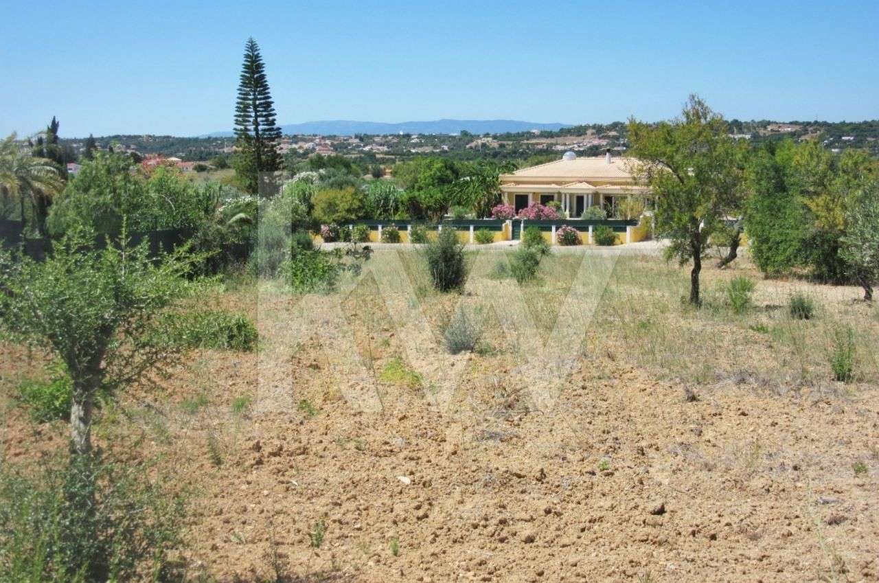 Terreno para comprar, Alcantarilha e Pêra, Silves, Faro - Foto 18