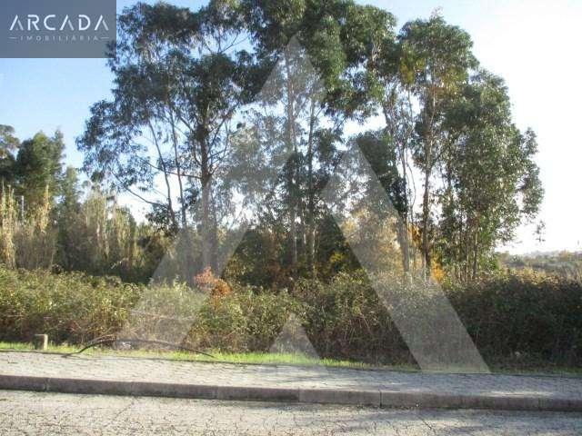 Terreno para comprar, Oliveira do Bairro - Foto 1