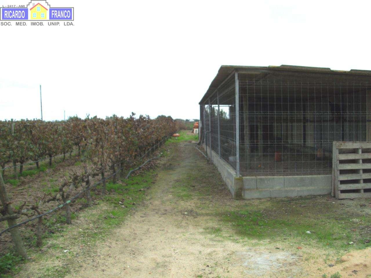Quintas e herdades para comprar, Poceirão e Marateca, Setúbal - Foto 4