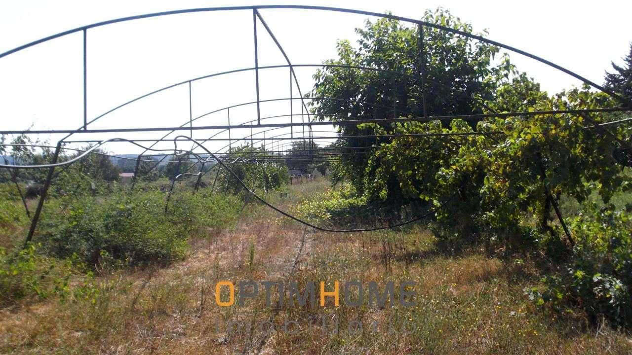 Quintas e herdades para comprar, Caria, Belmonte, Castelo Branco - Foto 13