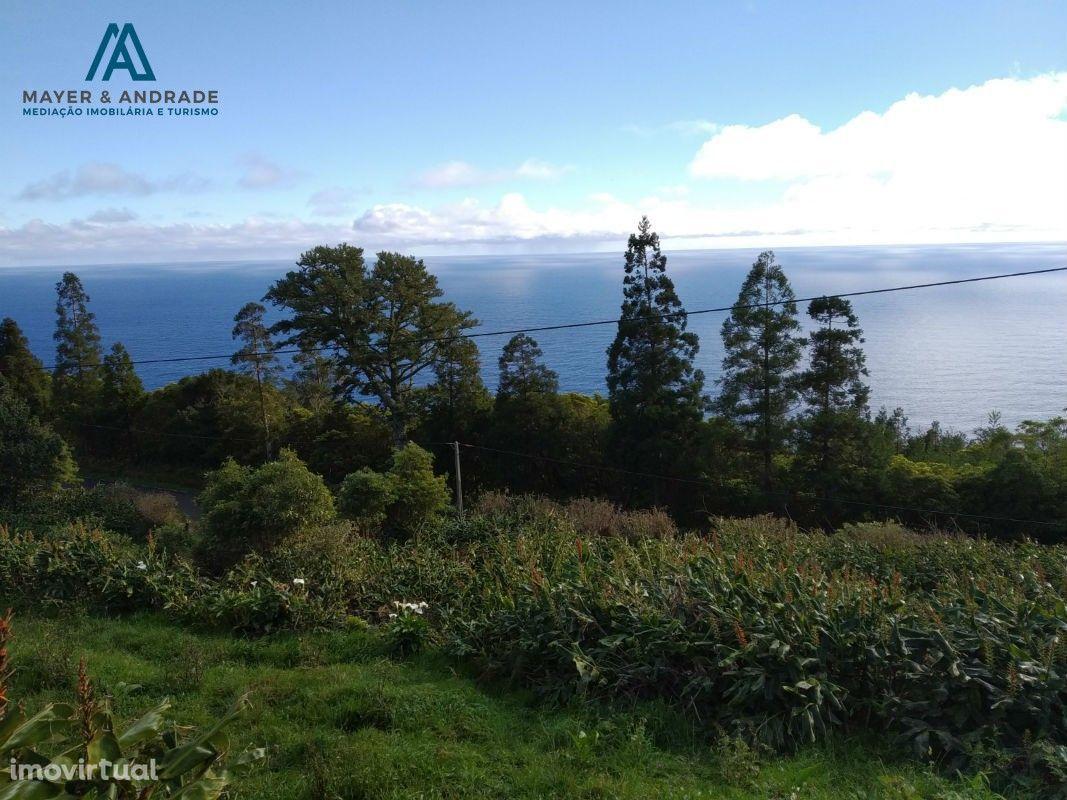 Quintinha no Pico ( Foros ) Azores