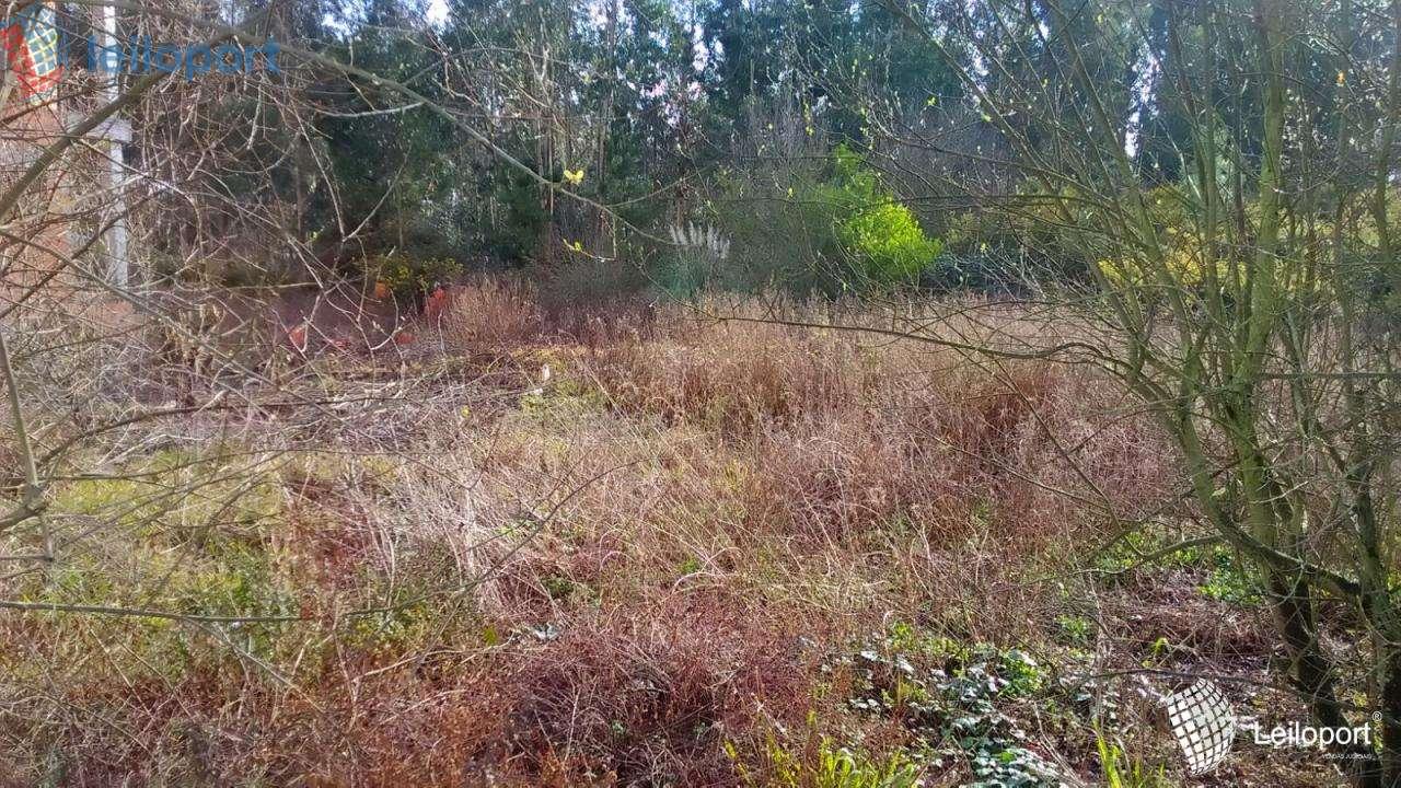 Terreno para comprar, Albergaria-a-Velha e Valmaior, Albergaria-a-Velha, Aveiro - Foto 4