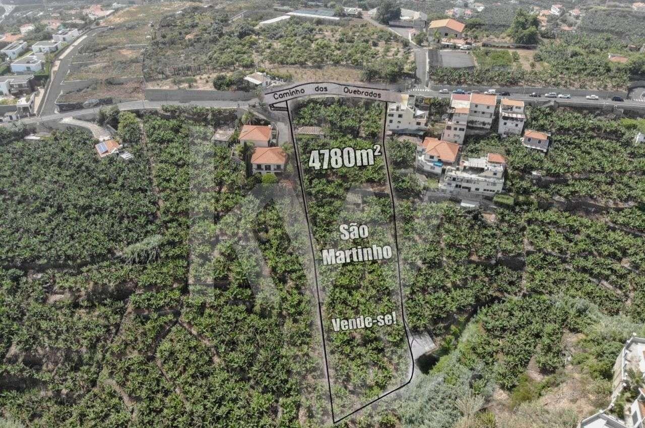 Terreno para comprar, São Martinho, Funchal, Ilha da Madeira - Foto 3