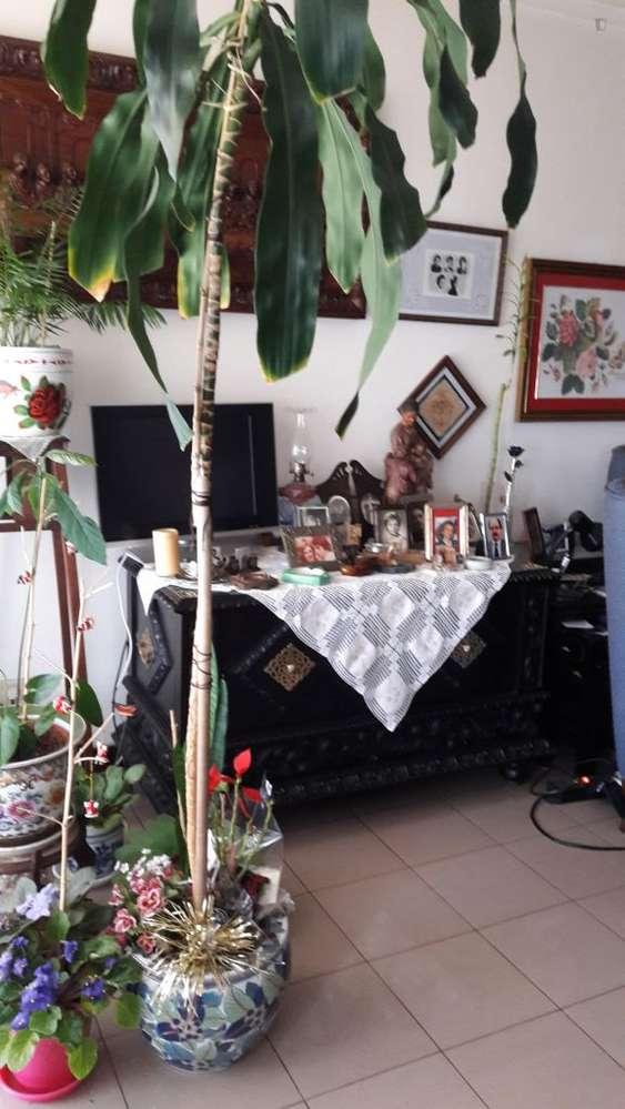 Quarto para arrendar, Gondomar (São Cosme), Valbom e Jovim, Porto - Foto 12