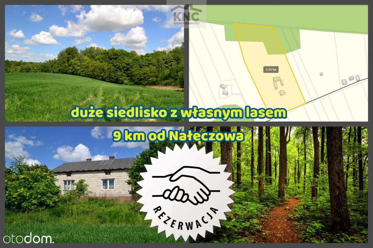 Duże siedlisko z własnym lasem blisko Nałęczowa.