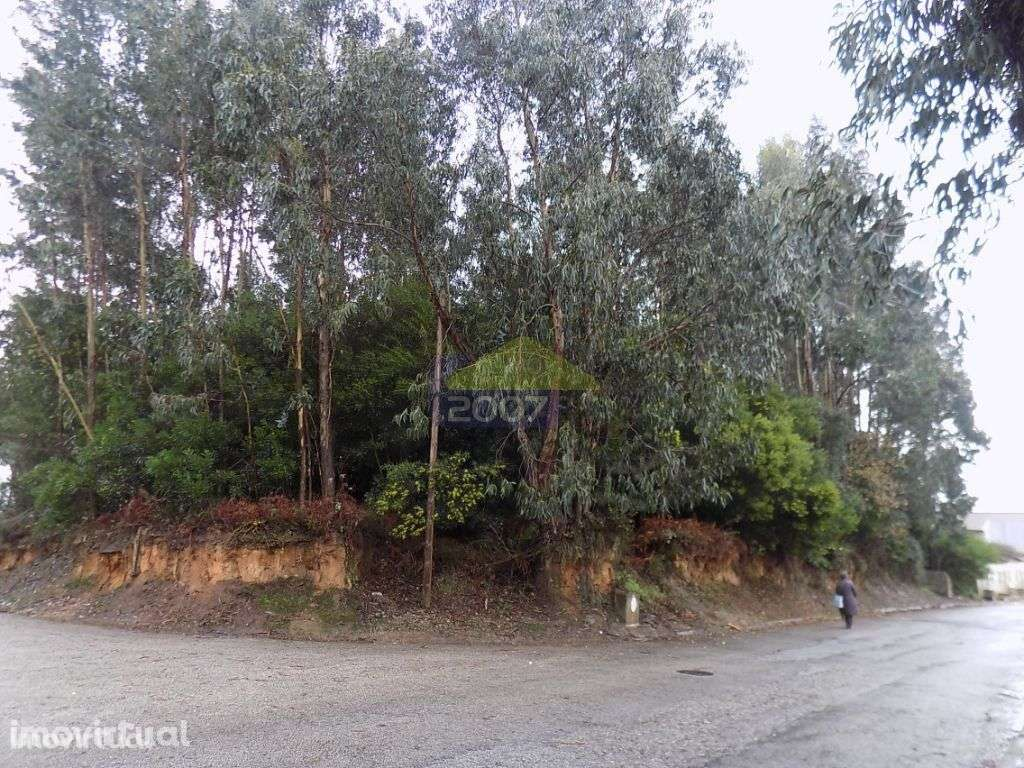 Terreno para comprar, Esmoriz, Ovar, Aveiro - Foto 1