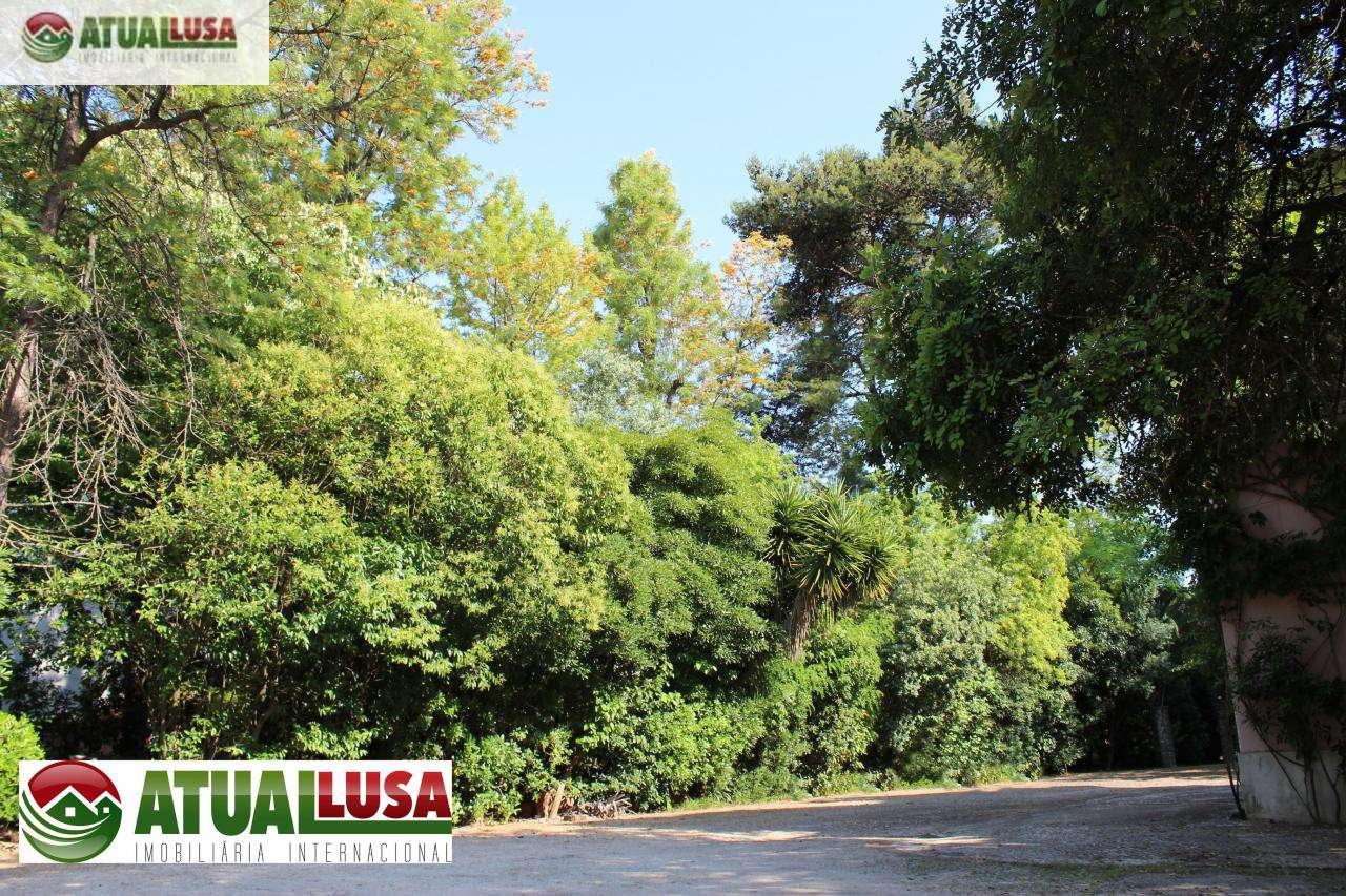 Quintas e herdades para comprar, Algés, Linda-a-Velha e Cruz Quebrada-Dafundo, Lisboa - Foto 18