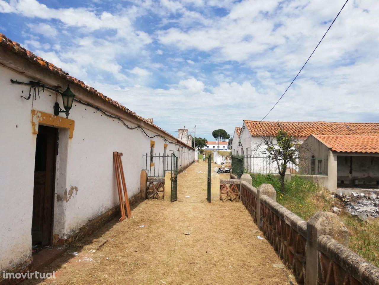 Monte no Alentejo: Herdade em Évora