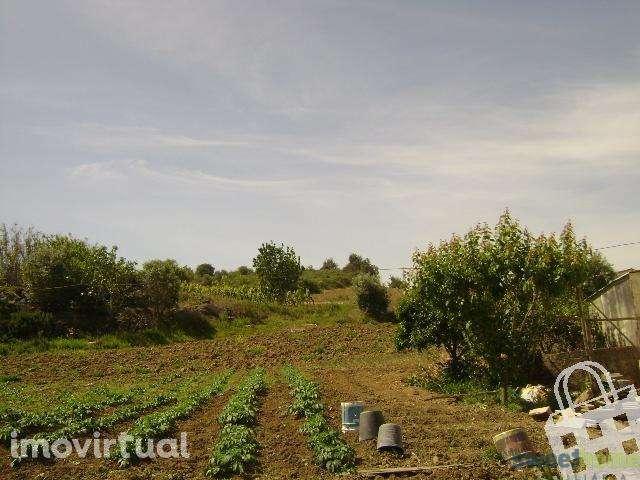 Terreno para comprar, Arranhó, Arruda dos Vinhos, Lisboa - Foto 1