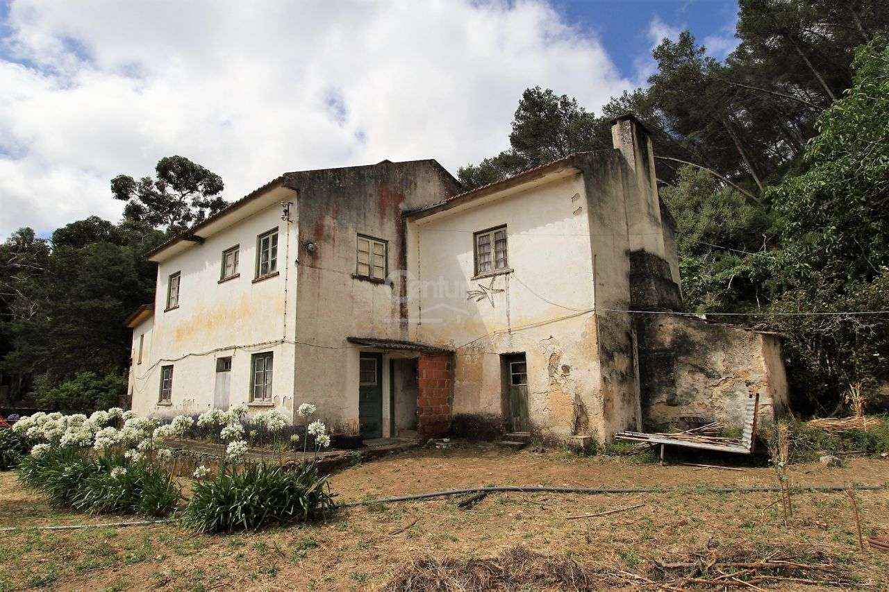 Quintas e herdades para comprar, Alcabideche, Cascais, Lisboa - Foto 2