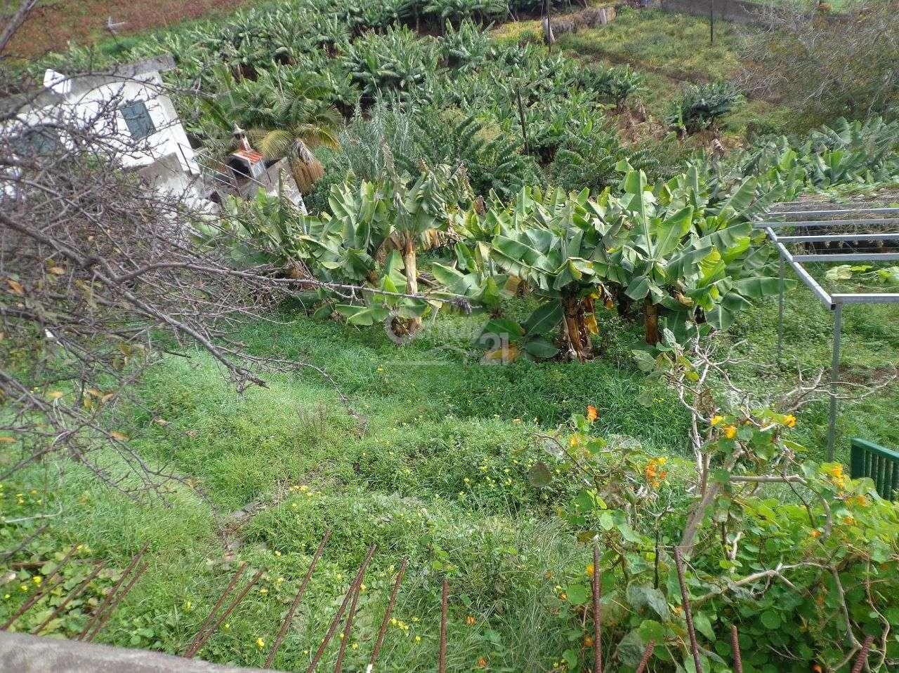 Terreno para comprar, Santo António, Ilha da Madeira - Foto 2