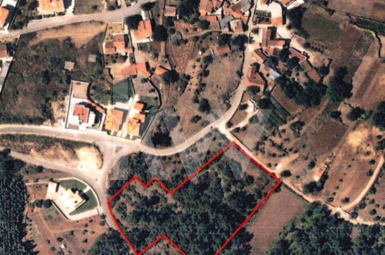Terreno para comprar, Cernache, Coimbra - Foto 3