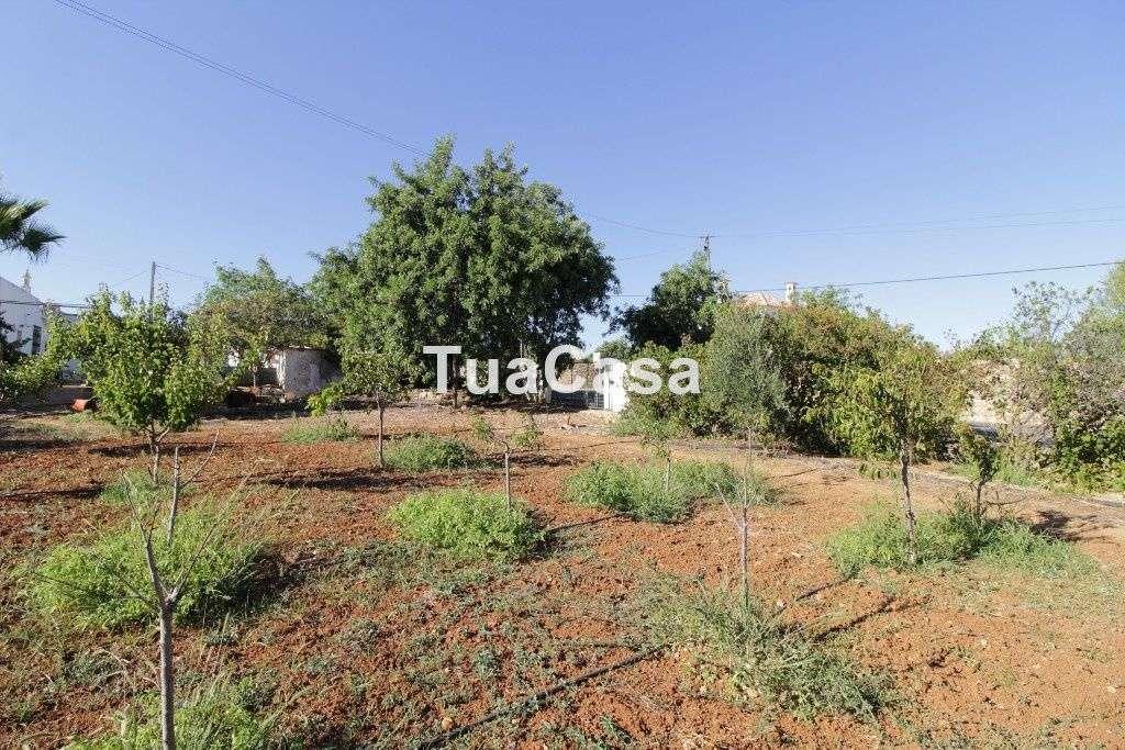 Quintas e herdades para comprar, Moncarapacho e Fuseta, Olhão, Faro - Foto 32