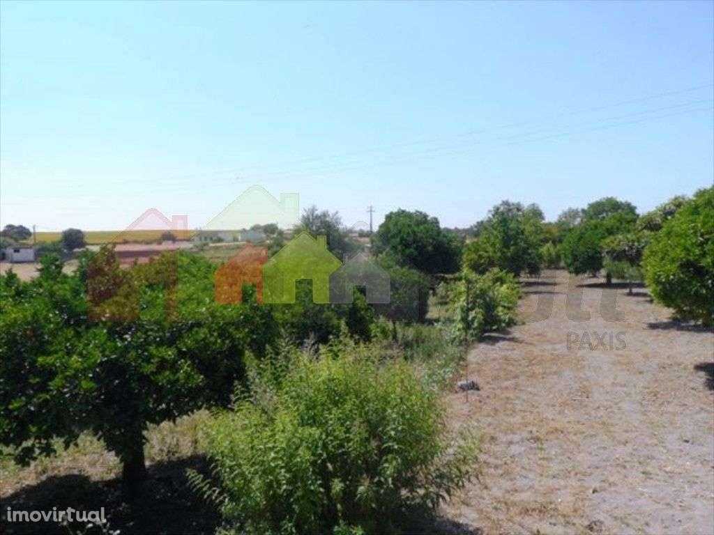 Quintas e herdades para comprar, Beringel, Beja - Foto 8