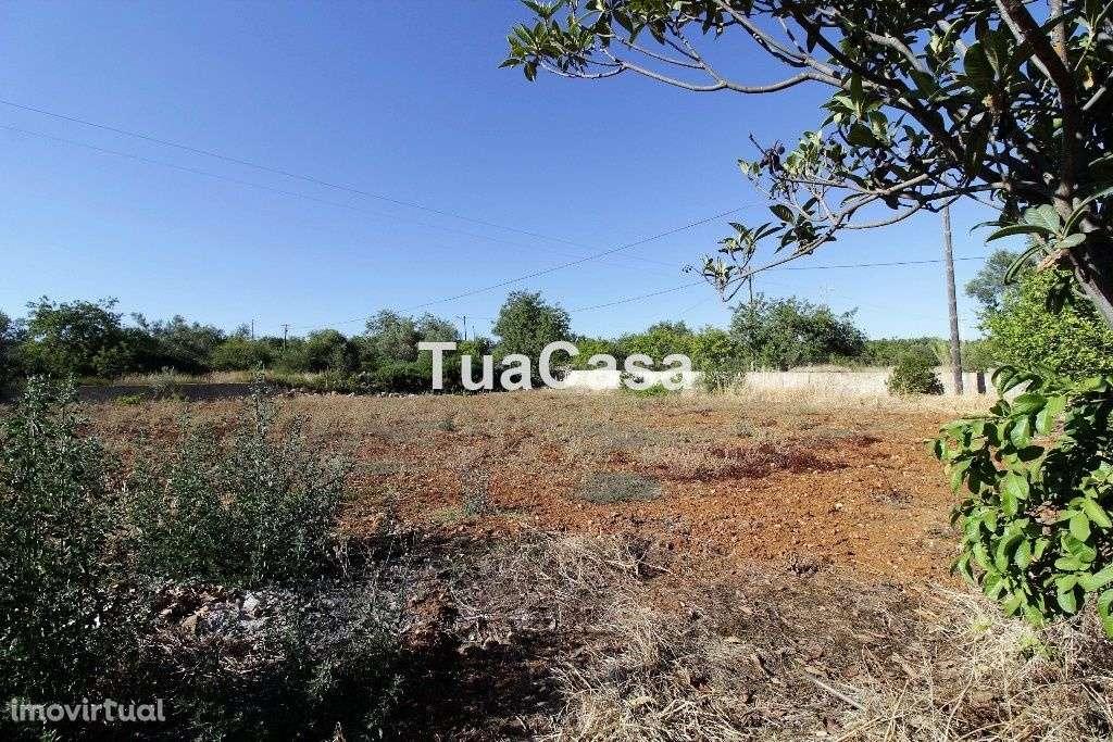 Quintas e herdades para comprar, Moncarapacho e Fuseta, Olhão, Faro - Foto 23