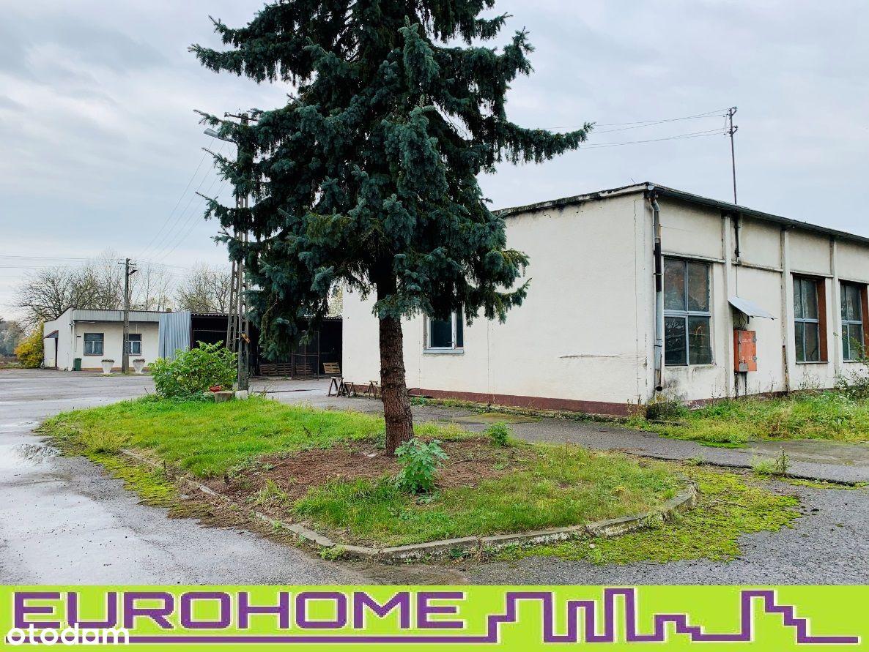 Nieruchomość zabudowana 5 ha- Trzciana k.Mielca