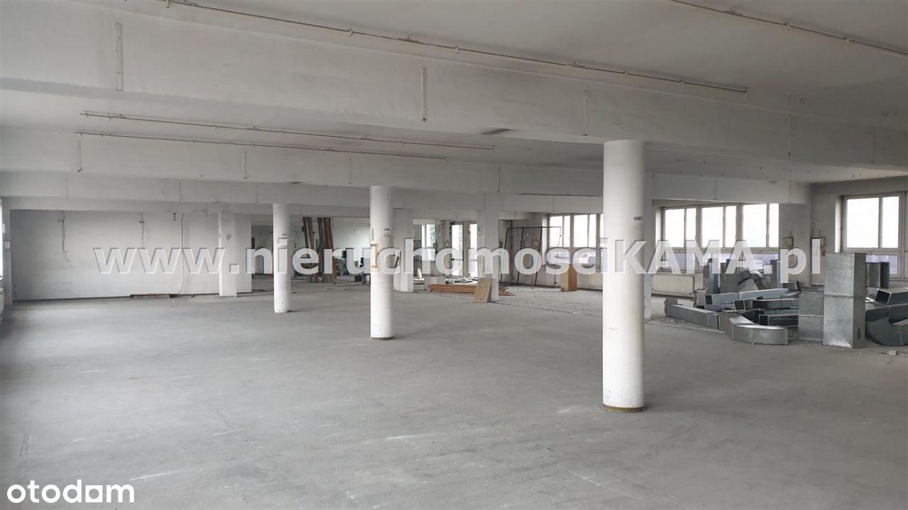 Hala/Magazyn, 1 000 m², Pszczyna
