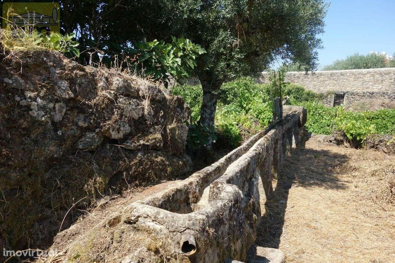 Quintas e herdades para comprar, Escalos de Cima e Lousa, Castelo Branco - Foto 11