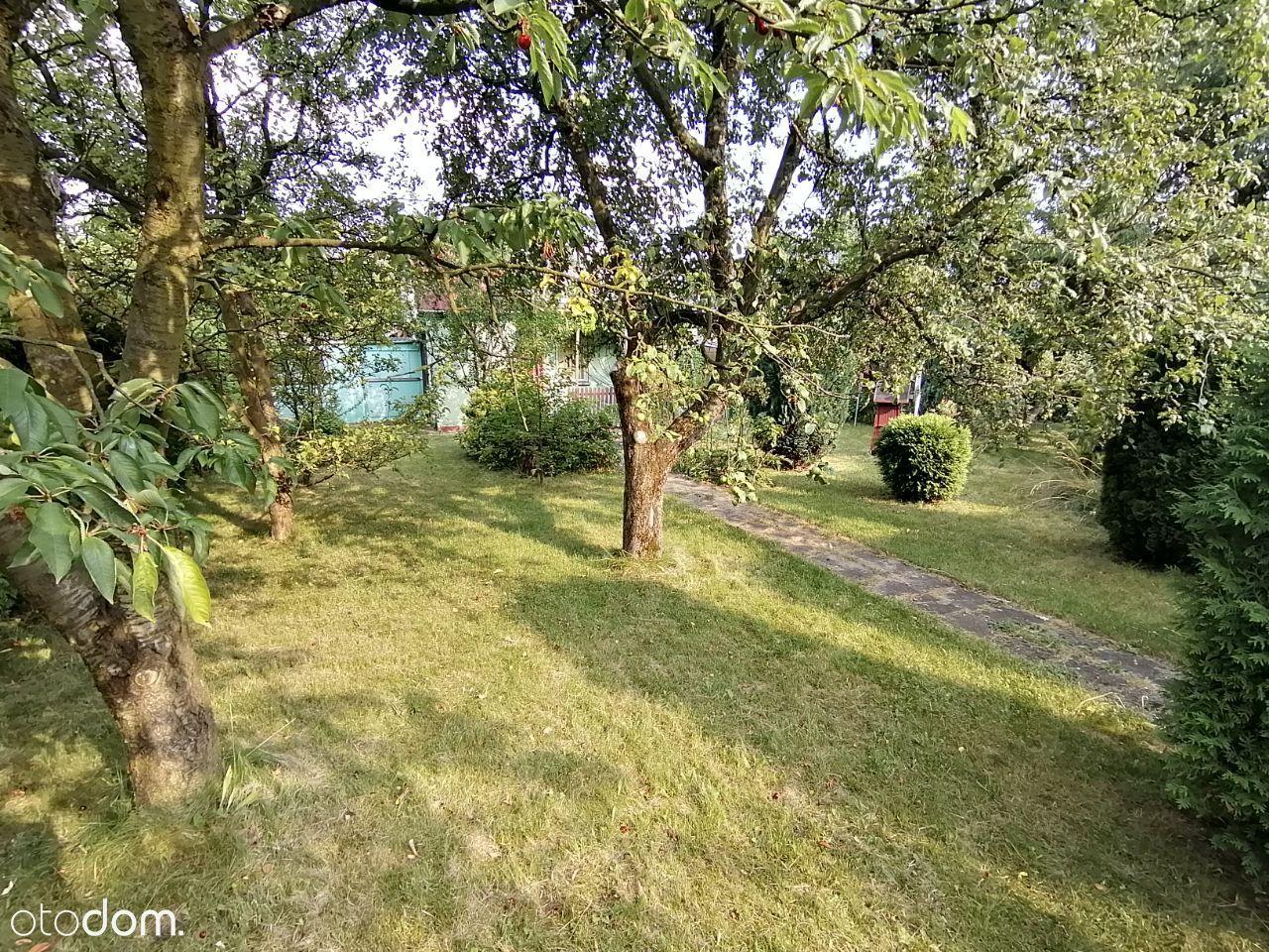 300 m2 | ROD Budowlani | zagospodarowana |