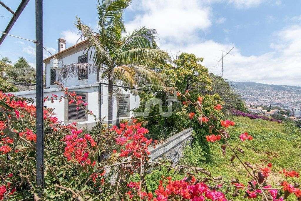 Quintas e herdades para comprar, São Martinho, Ilha da Madeira - Foto 35